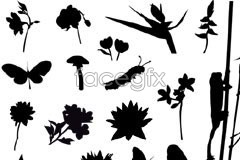 Link tovector silhouette elements natural insects flower of Variety