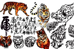 Link toVariety of life-like painting of tiger vector