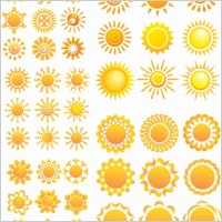 Link toVariety of sunflower patterns vector