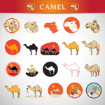 Link toVarious camel pattern vector