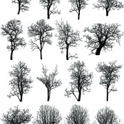 Link toVarious dead trees vector set free