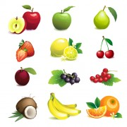 Link toVarious fresh fruit icons vector free