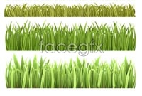 Link toVector beautiful grass