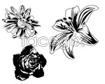 Link toVector black and white flower