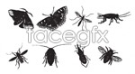 Vector black and white insects