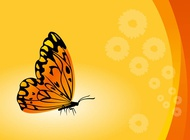 Link toVector butterfly background free