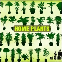 Link toVector home plants clipart