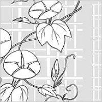 Link toVector line drawing of flowers-26(morning glory, lattice background)