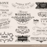 Link toVector set of calligraphic vintage elements 03 free