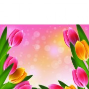 Link toVector set of spring flowers design graphics 06 free