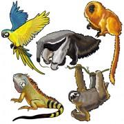 Link toVector set of wild animals design graphic 03 free