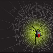 Link toVector spider web design background graphics 05 free