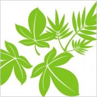 Link toVector tree leaf 02