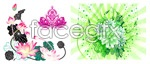 Link toVector water lily and lotus