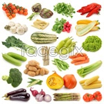 Link toVegetable pictures hd psd