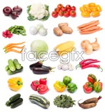 Link toVegetable psd