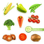 Link toVegetables icon vector