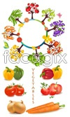 Link toVegetables vector material