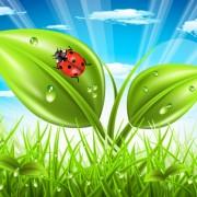 Link toVibrant spring elements vector background art 01 free