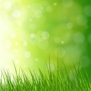 Link toVibrant spring elements vector background art 05 free