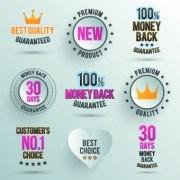 Link toVintage label and badges design elements 08 vector