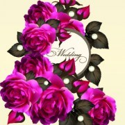 Link toVintage purple roses vector set 02