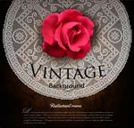 Link toVintage rose lace background vector