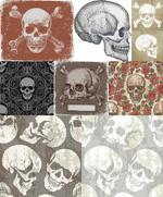 Link toVintage skull vector