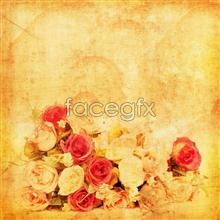 Link topictures roses beautiful style Vintage