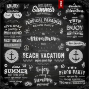 Link toVintage summer logos with ornaments design vector 02 free