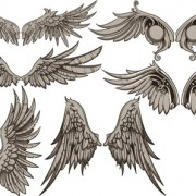 Link toVintage wings design vector set 01 free