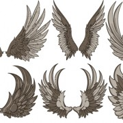 Link toVintage wings design vector set 02 free