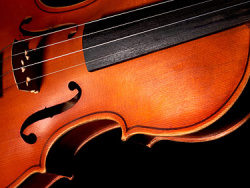 Link toViolins feature picture material