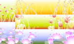 Water lily tulips background vector