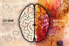 Link toWatercolor brain's creative vector illustration