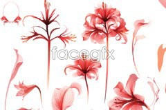 Link tovector flowers red dreams Watercolor