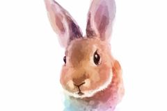 Link toWatercolor painting rabbit head vector
