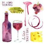 Link toWatercolor wine illustrations vector
