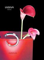 Link toWeisina bag advertising psd