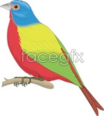 Link toWhite-cheeked birds vector
