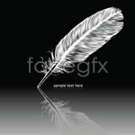 Link toWhite feather vector