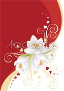 Link toWhite flowers and heart-shaped vector