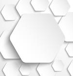 Link toWhite hexagon background vector