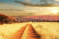 Link toWild grassland landscape high resolution images