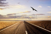 Link toWilderness highway high definition pictures