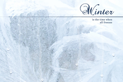 Winter frost and drops backgrounds vector
