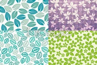 Link toWith its elegant leaves, flower background vector