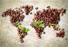 Link topictures definition high material leafy green beans coffee map World
