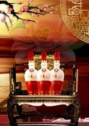 Wuliangye liquor posters psd