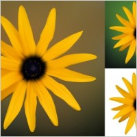 Link toYellow flower vector